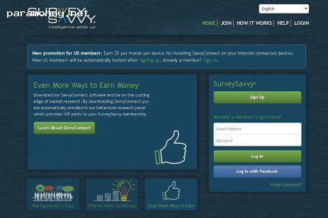 Best paid online survey sites in new zealand to earn extra
